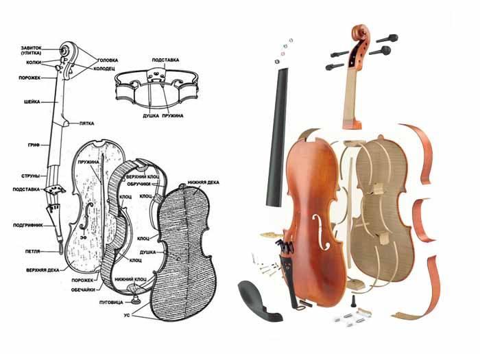 Детали и части скрипки